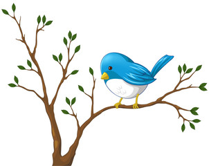 Cute little blue bird on the branch of the tree