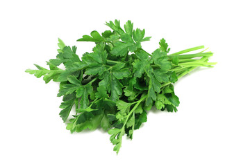 sheaf of green parsley on a white background