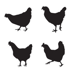 various silhouettes of chickens