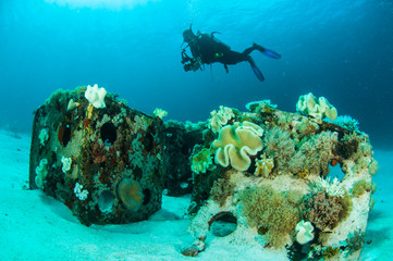 scuba diving diver shipwreck kapoposang indonesia underwater