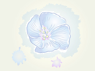 the picture of a flower watercolor
