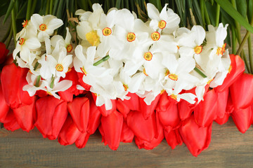 Daffodils and tulips on wooden background