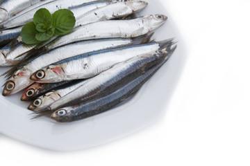 alici su piatto su sfondo bianco
