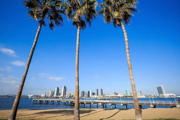 Panorama of Downtown of San Diego, California