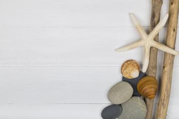 Fototapeta Driftwood, pebbles and shells obraz