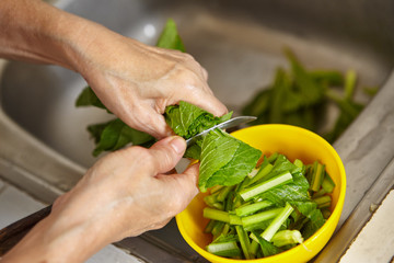 Cutting vegetable
