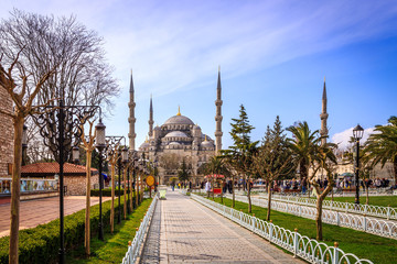 Blue mosque in sunny day.