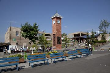 Fotomurales - 旭川の旭山動物園