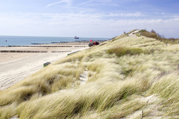 the dunes, Zoutelande, the Netherlands