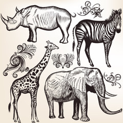 Collection of vector savanna animals