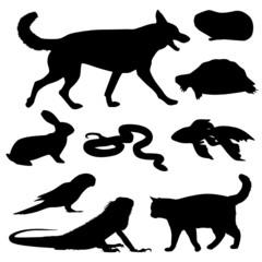 Haustiere Set