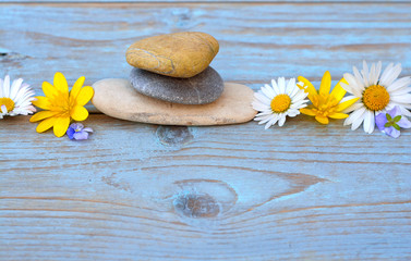 Acrylic Prints Zen stones on a old wooden background with daisies
