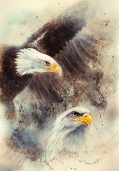 beautiful painting of two eagles on an abstract background Symbo