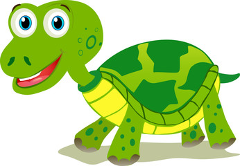 Cartoon turtle isolated on white background.