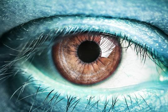 Eye of the alien.