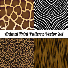 Animal Print Illustration Vector Set.