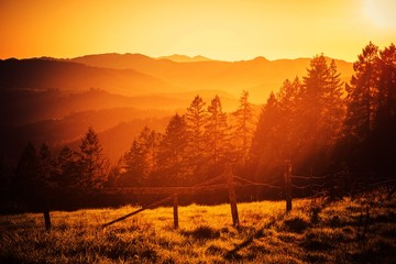 Wall Mural - California Hills Sunset