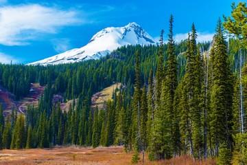 Wall Mural - Mount Hood in Oregon