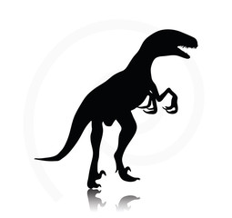 dinosaurs raptor