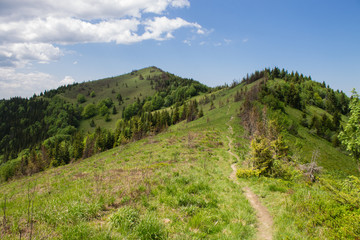 path in green summer mountains with white cloudy blue sky