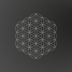 Flower of life, geometric shape, line art design, tattoo