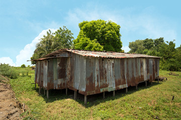 Abandoned house-Zinc house