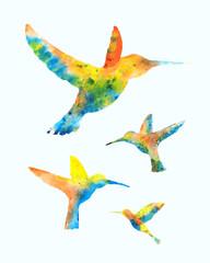 Hummingbirds Watercolor