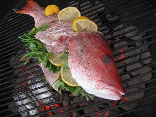 Fresh caught red snapper with lemon and parsley on the grill