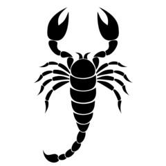 Scorpion Silhouette - illustration