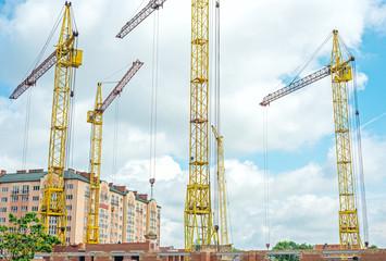 Construction Cranes Against the Sky