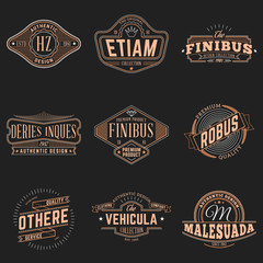 Set of Hipster Vintage Labels, Logotypes, Badges