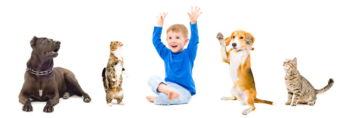 Group of a pets and cheerful boy