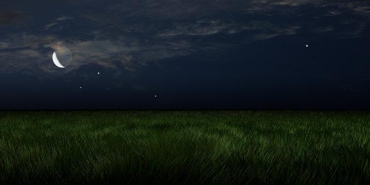 Moonlit Meadows