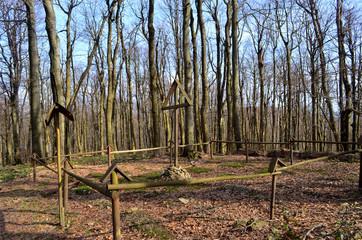 leśny cmentarz