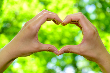 Closeup of woman hands showing heart shape on green background