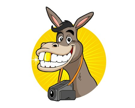 donkey video logo image vector
