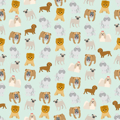 Seamless colorful background made of different breeds of dogs