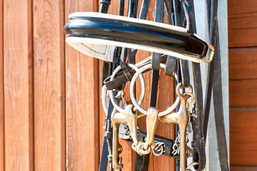 Horse bridle hanging on stable wooden door. Closeup outdoors.
