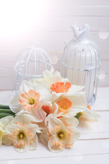 Background with fresh narcissus and candles