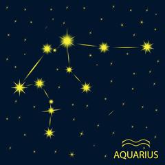 Zodiacal constellations  AQUARIUS.