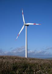 wind turbine in a field with a blue sky