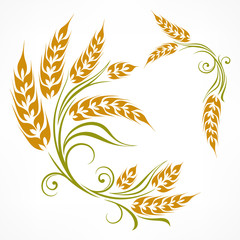 Stylized ears of wheat pattern on white, vector illustration