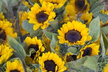 pak klong talad flower market
