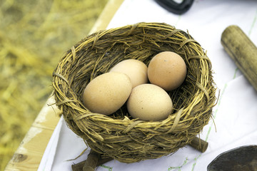 Four eggs in an artificial nest. Color image