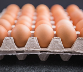Chicken eggs in the package