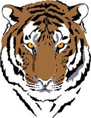 Fototapete - tiger head in color interpretation 6