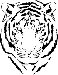 tiger head in grey interpretation 5