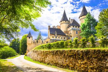 Fotobehang Kasteel most beautiful castles of France - Puimartin,Dordogne