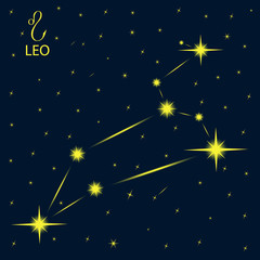 Zodiacal constellations LEO.
