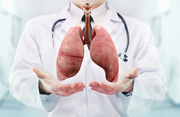 Doctor with stethoscope and lungs on the  hands in a hospital
